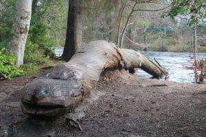 Lochness Monster, Inverness. Highland Road Trip around Scotland