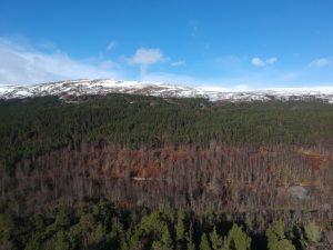 Glenn Affric. Highland Road Trip around Scotland