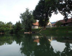 Paddling around Kostanjevica na Krki
