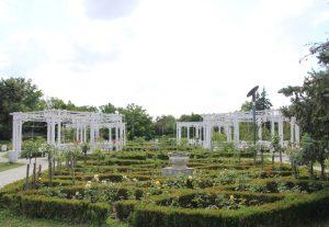 Roses Park, Timișoara, Romania
